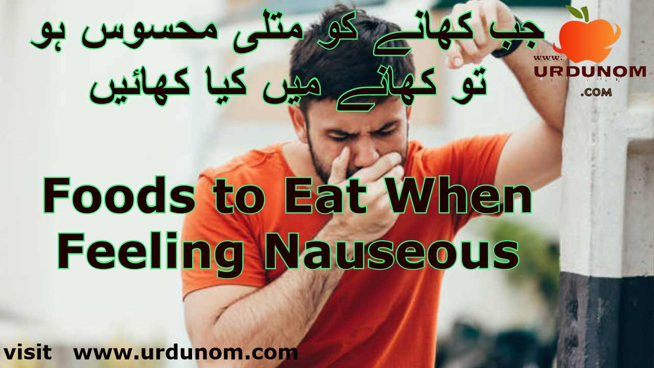 جب کھانے کو متلی محسوس ہو تو کھانے میں کیا کھائیں | Foods to Eat When Feeling Nauseous in urdu