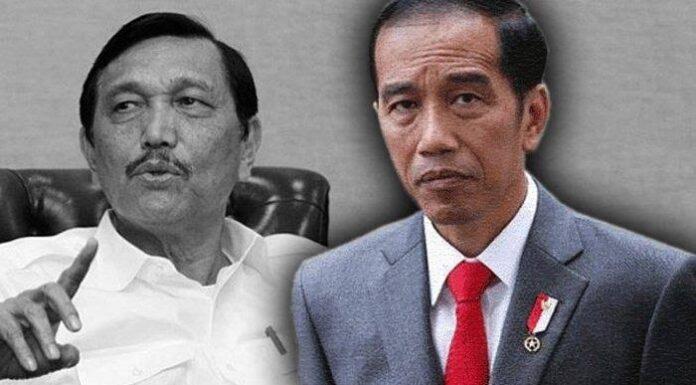 Sosok Ini Berani Gugat Jokowi Soal PPKM ke PTUN, Luhut Juga Diminta Lepas Jabatan