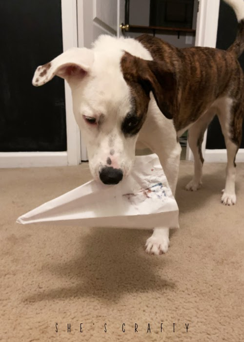 Dog chewing on Come Follow Me printable