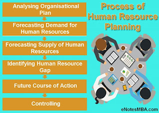 Steps in the Process of Human Resource Planning