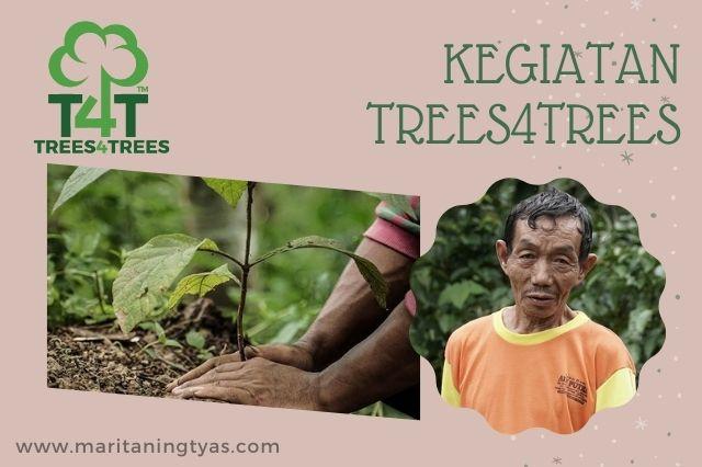 kegiatan trees4trees di Indonesia