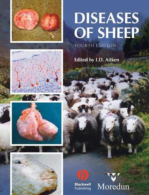 Diseases of Sheep 4th Edition  - WWW.VETBOOKSTORE.COM