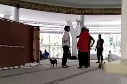 Viral Wanita Non Muslim Bawa Anjing Lalu Mengamuk Di Dalam Masjid, Umat Islam Memprotes