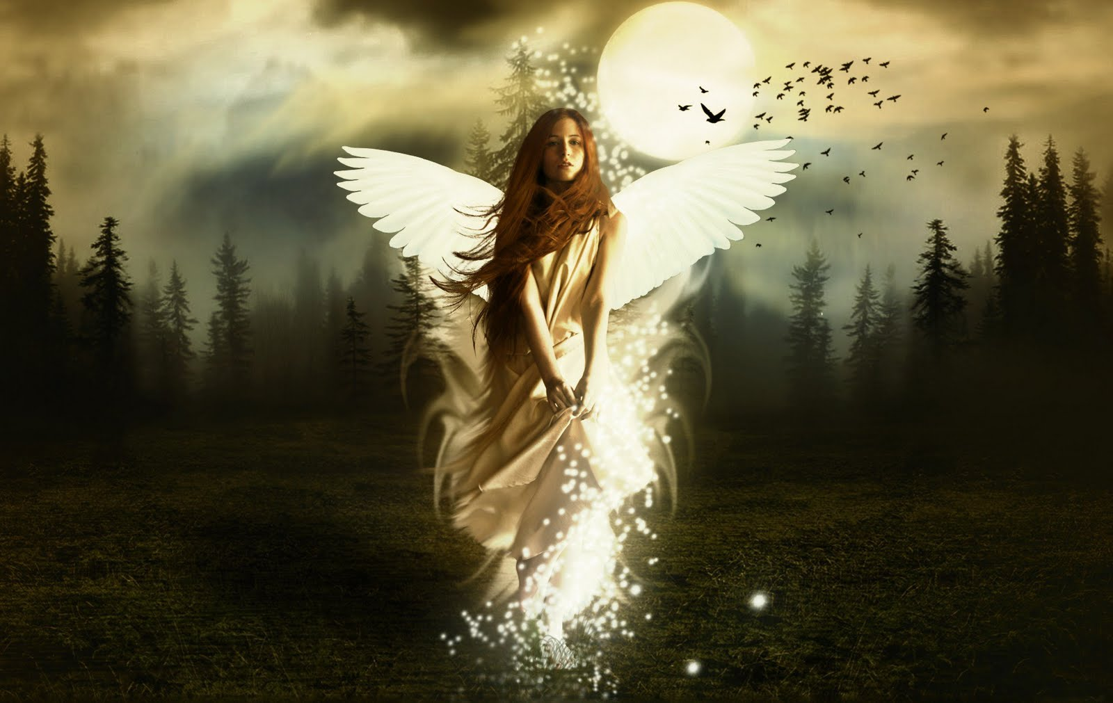 beautiful angels wallpapers 2013