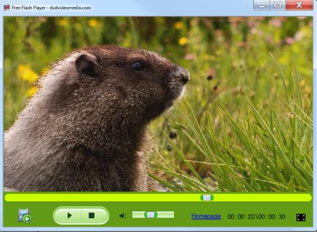 تحميل برنامج فلاش بلاير برابط مباشر Free Flash Player