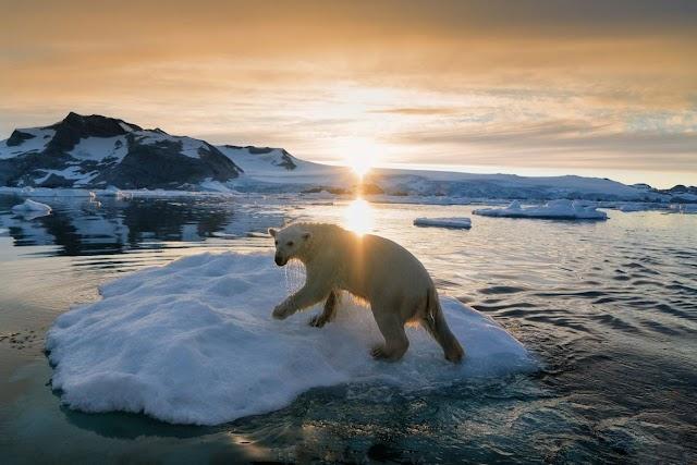 Groenlandia podría perder más hielo este siglo que en los últimos 12.000 años