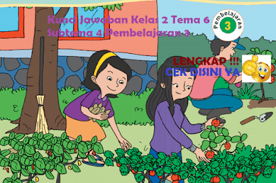 Kunci Jawaban Tematik Kelas 2 Tema 6 Subtema 4 Pembelajaran 3 www.simplenews.me