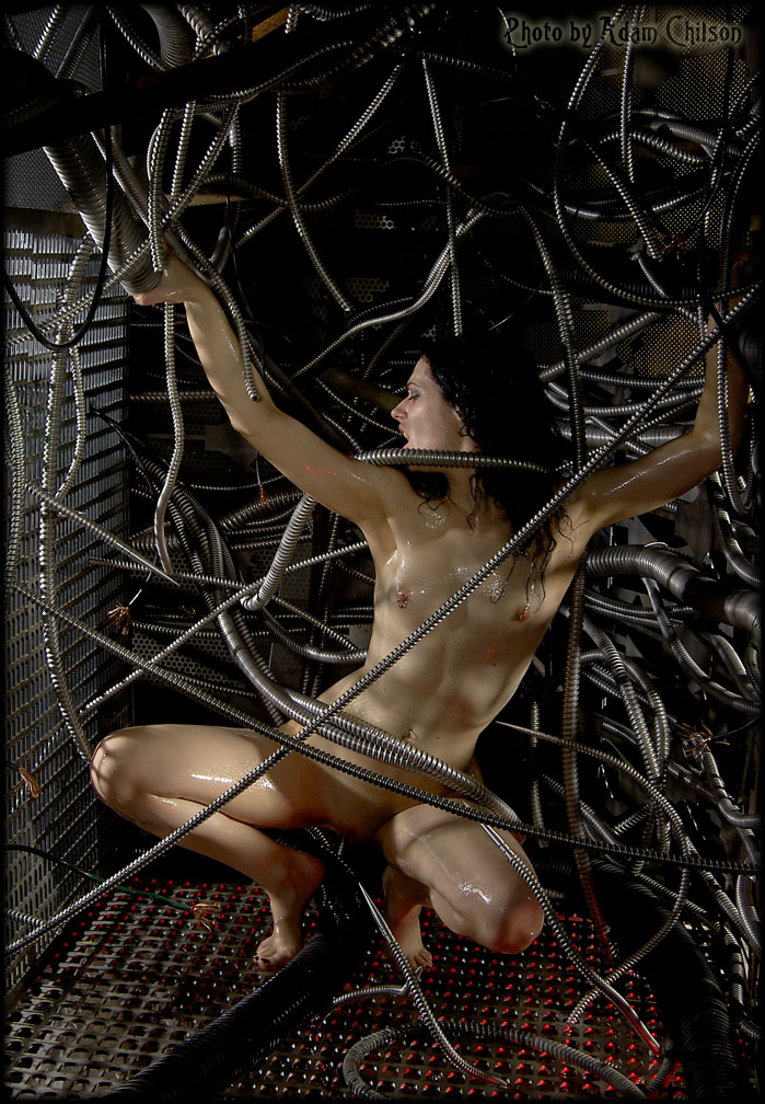 Would barbed wire bondage porn consider