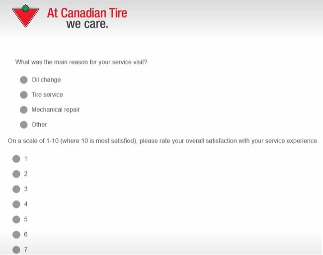 canadian tire survey stakes