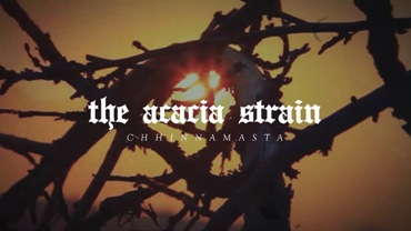 Chhinnamasta Lyrics - The Acacia Strain