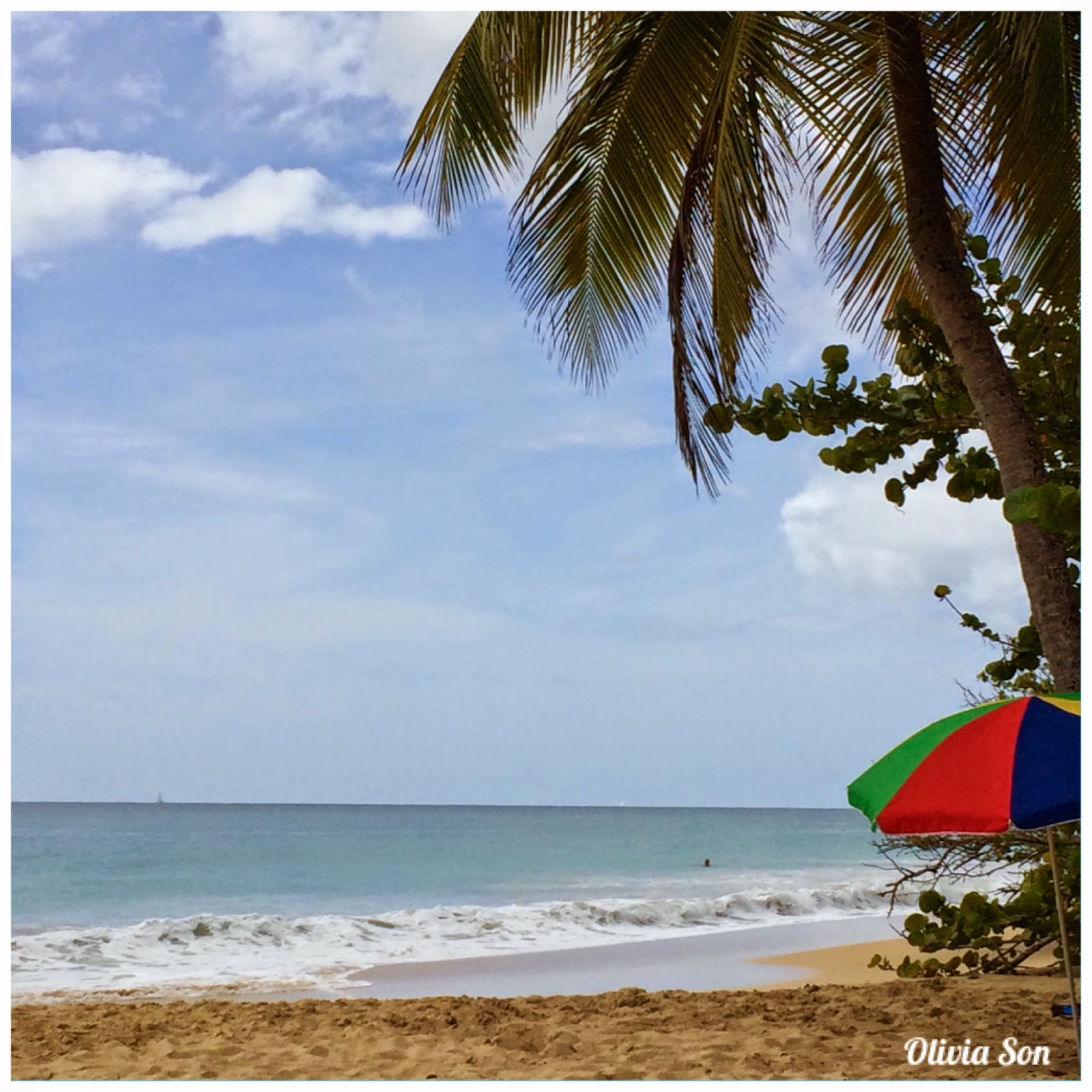 Plage Salines Martinique