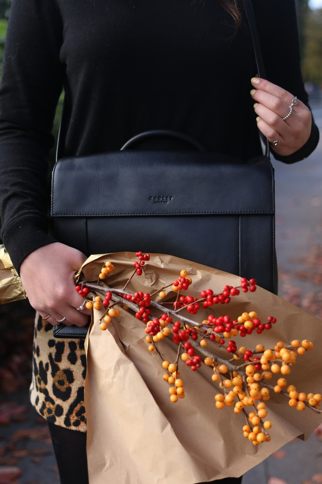 Autumn colours and classic Radley bags