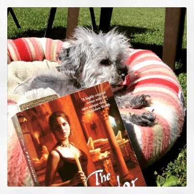 Murchie lays outdoors, head raised and front paws on the rim of a soft-sided dog bed patterned in pink and beige stripes. His tongue is extended and curled back to touch his nose. In front of him is a paperback copy of The Mirador. Its red-tinted cover features a pale-skinned, dark-haired woman in a sleeveless black ball gown. She carries a candle and stands in a tomb.