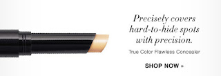True Color Flawless Concealer