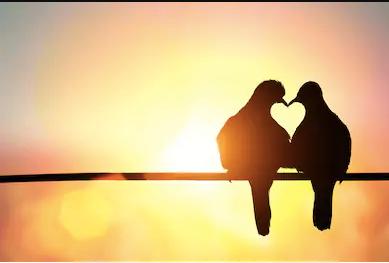 http://www.jooinfoo.com/2020/03/19-quotes-tentang-cinta-terbaik.html