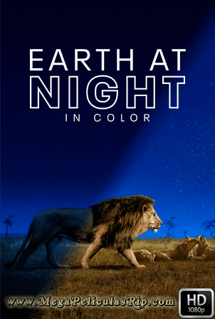 Planeta Nocturno A Todo Color Temporada 2 [1080p] [Latino-Ingles] [MEGA]
