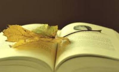Books Status in Hindi