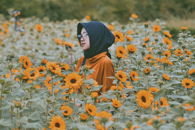 Sky Garden PVJ Bandung