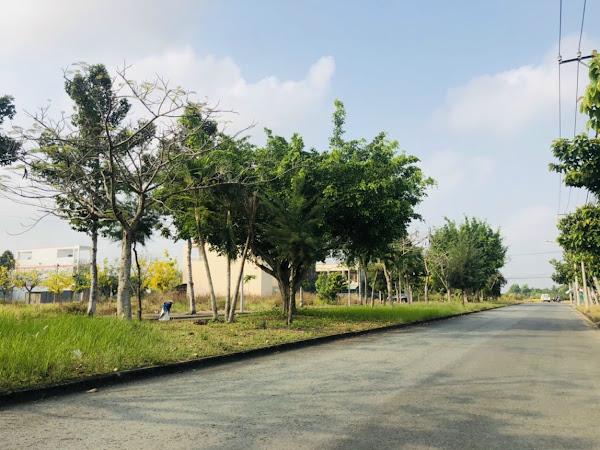 hạ tầng đường xá tại dự án đô thị lợi bình nhơn