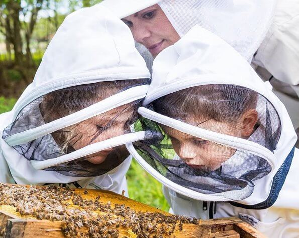 Crown Princess Victoria took Princess Estelle and Prince Oscar to the hives at Haga and visited family's beehives