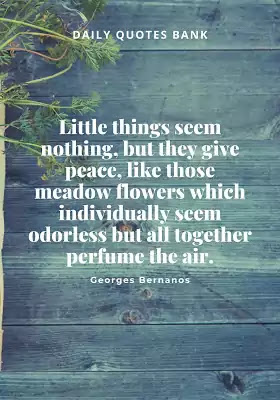 Famous Quotes About Garden and Life - Garden Proverbs Quotes