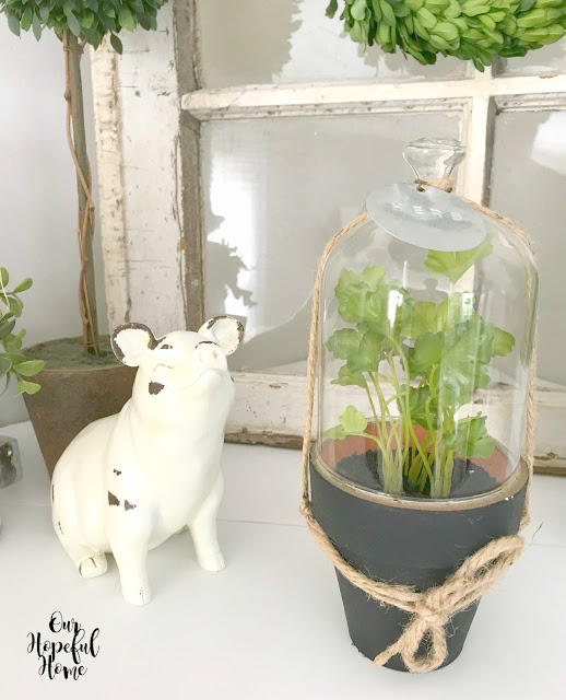 chippy white farmhouse pig statue herb cloche