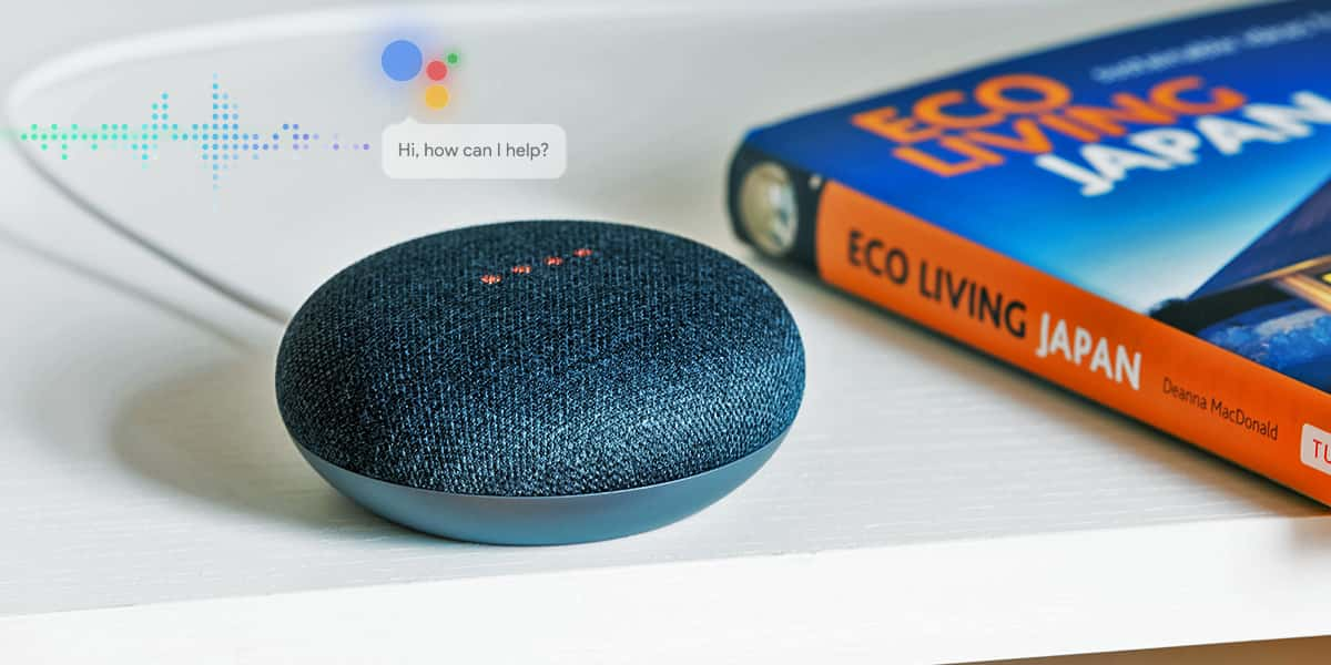 google home, amazon echo for bloggers