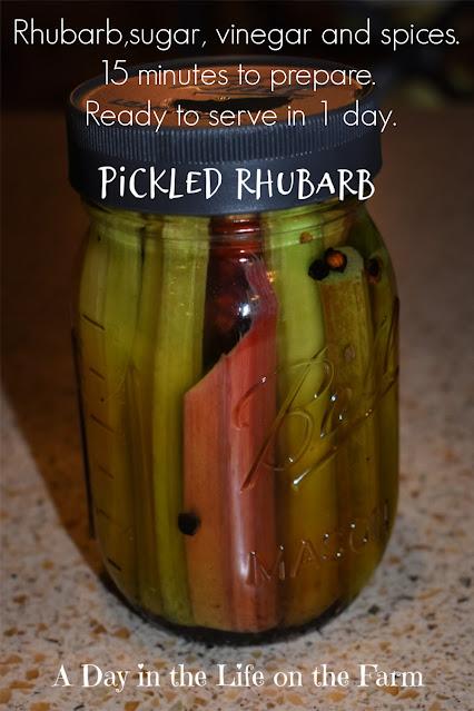 Pickled rhubarb pin