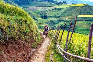 Villager in Vietnam