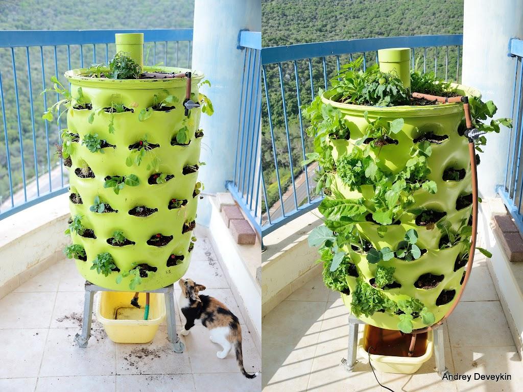 Для сада и огорода своими руками из бочки фото 578