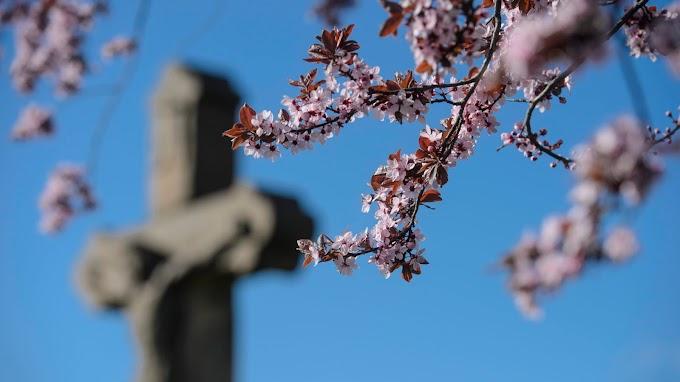 Csalóka napfény, a tavasz hétvégén is elmarad