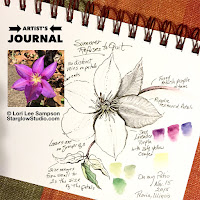 My artist's journal of nature sketches and studies.