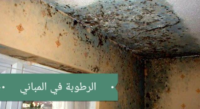 ما هي أسباب الرطوبة في المباني؟