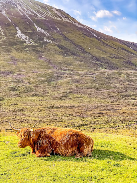 Scotland by rail part 4, the isle of skye is enchanting, mandy charlton photographer, writer, blogger, solo travel in the Uk