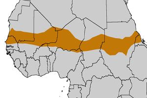 Mapa de localización de la región del Sahel, en África