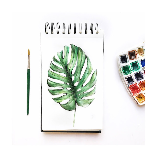 Monstera Leave draw