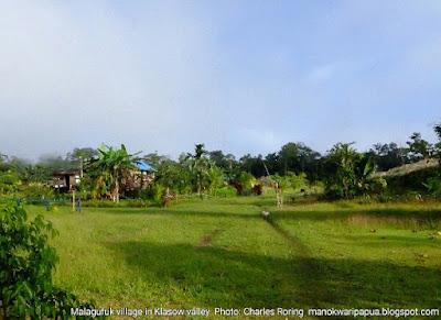 Birding in Malagufuk village with 2 Australian tourists Peter Lansley and Daniel