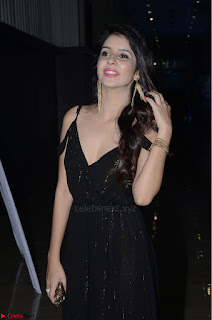 Kashish Vohra at Rogue Movie Audio Launch ~  (27).JPG
