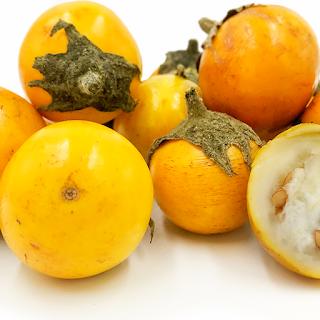 Obat Sakit Gigi Berlubang Tradisional Paling Ampuh Dan Tanpa Efek Samping., terong peuheur, terong kuning, ulam gigi, cirumanja