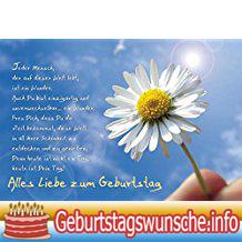 Geburtstagskarte Sprüch