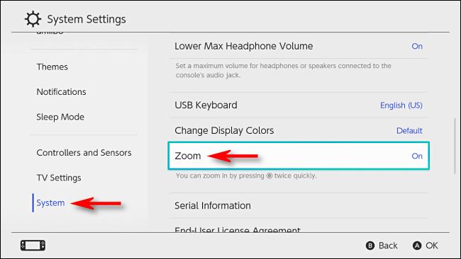 قم بتشغيل تكبير إعدادات النظام على Nintendo Switch