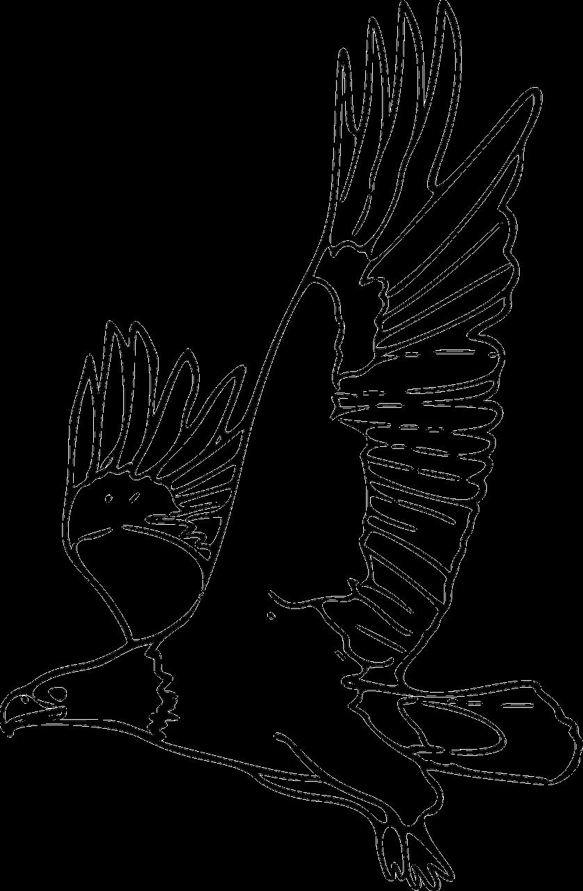 Gambar Gambar Vektor Gratis Sayap Lambang Simbol Desain Pixabay