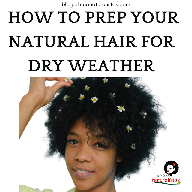 HOW TO PREP YOUR NATURAL HAIR FOR DRY WEATHER