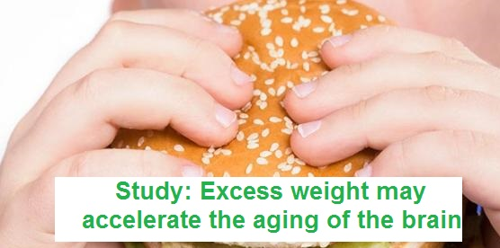 Study: Excess weight may accelerate the aging of the brain