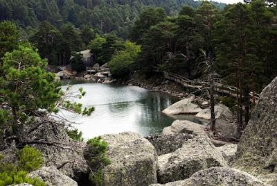 La imagen de La Laguna desde arriba es impresionante, circular rodeada de las altas rocas y arboles se ve incluso más pequeña pero espectacular, el silencio es lo que mas predomina