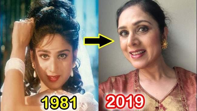 meenakshi-sheshadri-now-looks