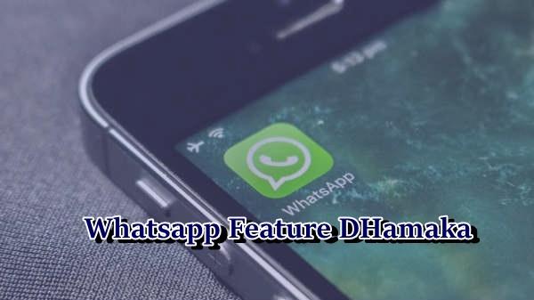 WhatsApp का नया गैलरी feature  अब  Hide and Unhide कर सकेंगे