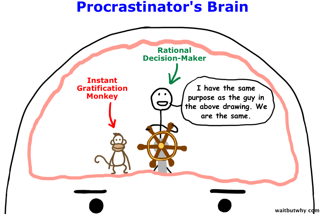 Why procrastinators procrastinate