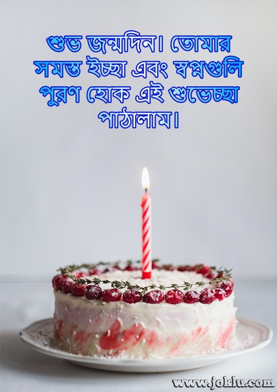 Wishes and dreams come true birthday message in Bengali