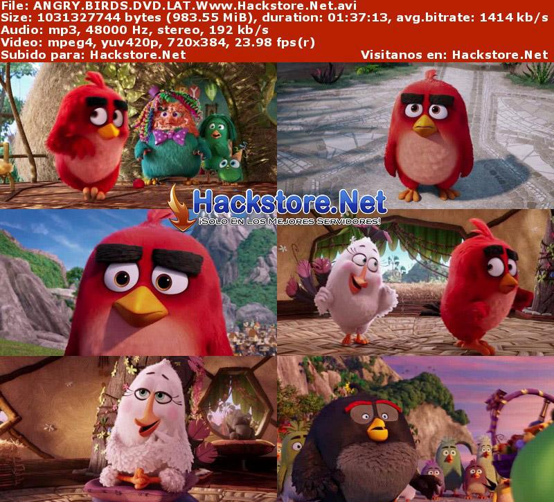 Capturas de Angry Birds: La Película (2016) DVDRip Latino